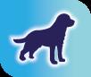 vedlik a kutya