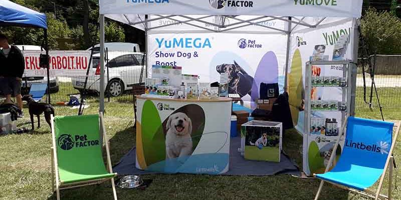 termeszetes nyugtato kutyaknak