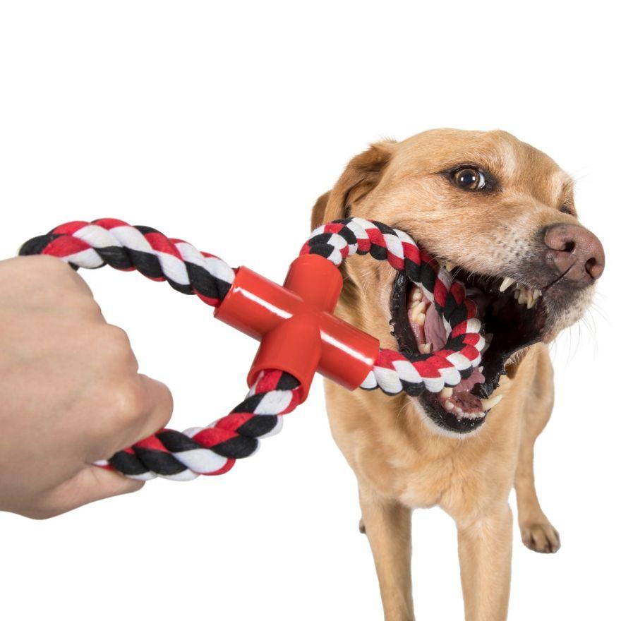 Színes kötéljáték kutyáknak